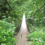 Пешы мосцік у лесе
