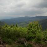 Перад лесам